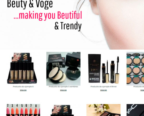 Ejemplo de tiendas virtuales maquillaje