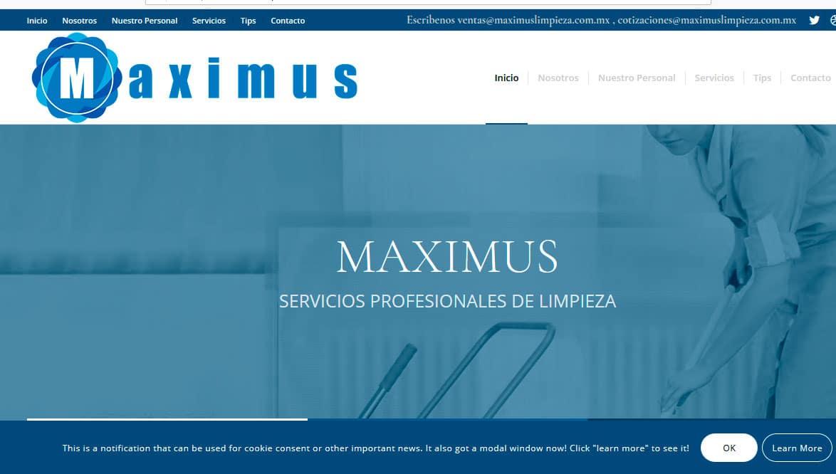 Ejemplo de pagina web limpieza