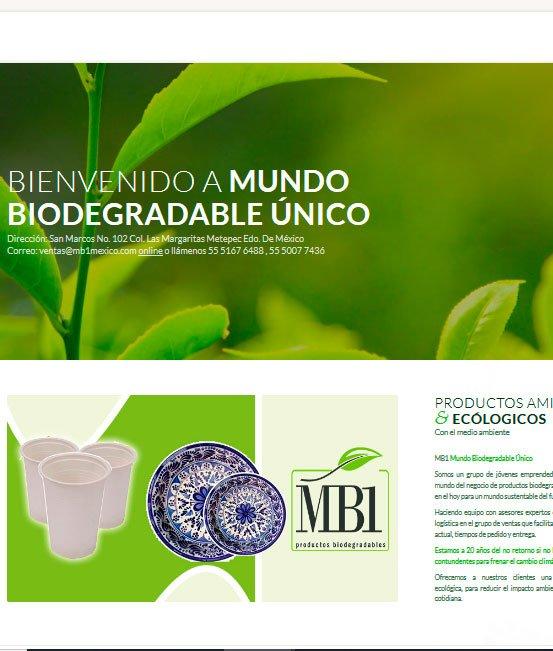Ejemplo de tiendas virtuales ecologicas